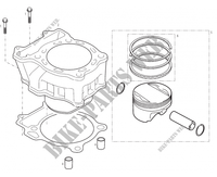 CYLINDER for GASGAS WILD HP 450 2003