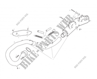 EXHAUST for GASGAS WILD HP 450 2003