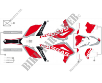 STICKERS for GASGAS EC RACING 300 2017